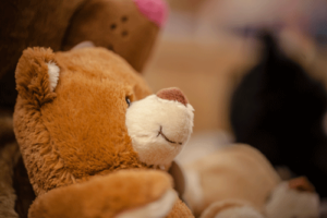 Thedy Donaueschingen - Spielwaren für die ganz Kleinen - ein Teddybär
